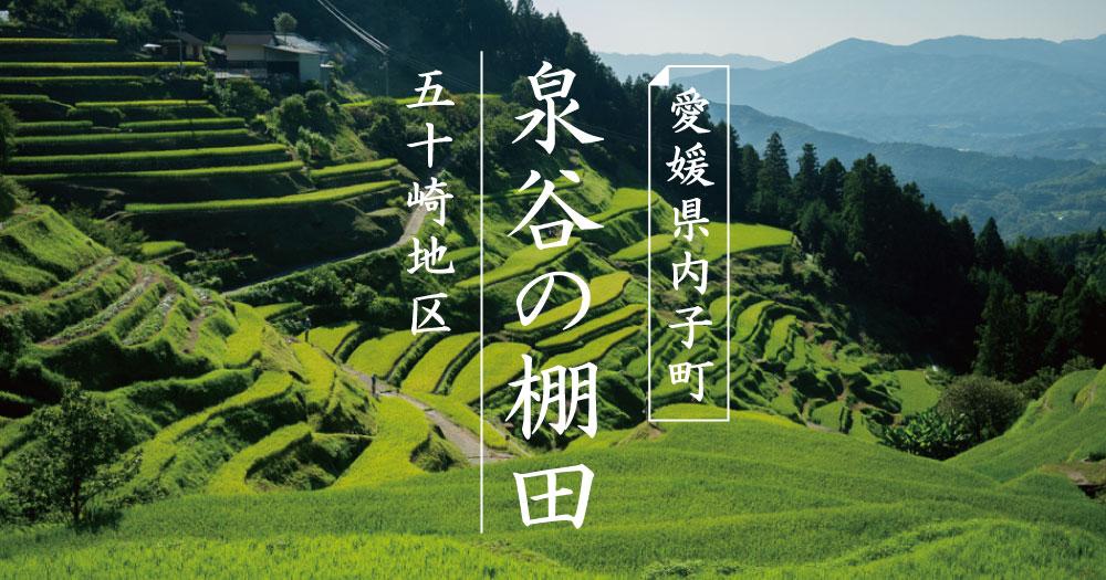 内子町五十崎|泉谷の棚田に行ってみた!|日本の棚田百選