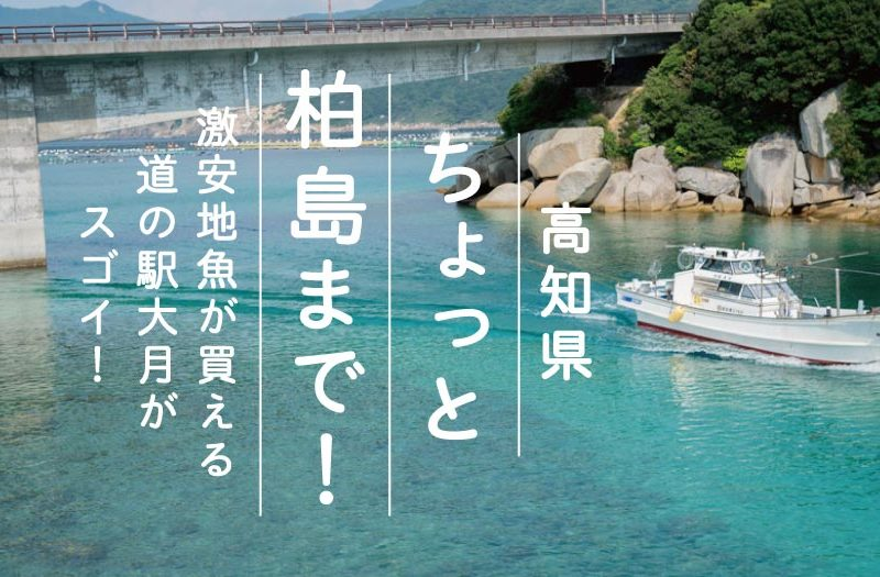 高知 ちょっと柏島まで! 激安地魚が買える道の駅大月がスゴイ!