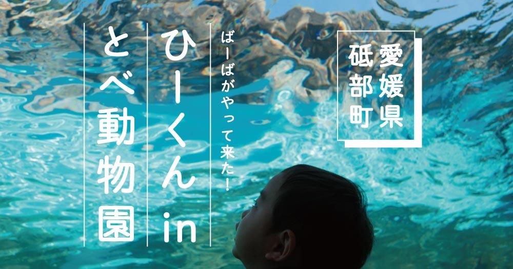 ひーくん in とべ動物園|愛媛|砥部町