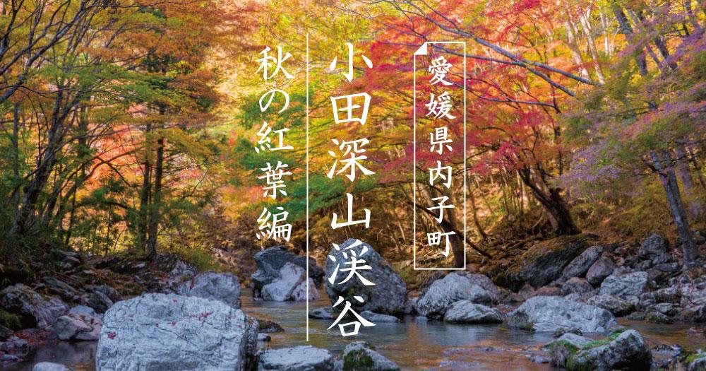 内子町|小田深山渓谷の紅葉|2017秋